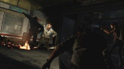 the last of us (10)