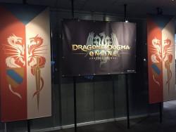 image88 250x188 Dragon's Dogma Online بر روی PS4 به صورت ۱۰۸۰p و ۶۰fps اجرا می شود