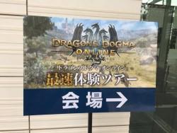 image89 250x188 Dragon's Dogma Online بر روی PS4 به صورت ۱۰۸۰p و ۶۰fps اجرا می شود