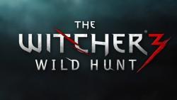 ukidOQM1 250x141 تصاویر جدیدی از بازی The Witcher 3: Wild Hunt منتشر شد