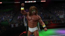 wwe 2k15 pc screen 1 250x141 WWE 2K15 امسال بر روی PC منتشر میشود