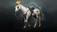 MGS-5-horse-armour-parade-tack