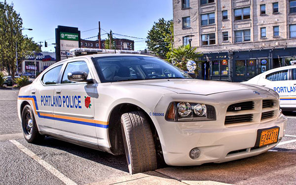 ایده پلیس شدن در GTA هم در نوع خود جالب است؛ اما کمی بلندپروازانه به نظر میرسد