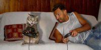 تماشاخانه شماره #۹۵ | گربههای لوسِِِ بی خاصیت!