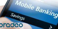 پرادئو، نرم افزار حفاظت از اطلاعات شخصی، تراکنشهای بانکی و مالی