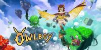 نسخههای پلیاستیشن ۴ و نینتندو سوییچ Owlboy بصورت فیزیکی عرضه میشوند