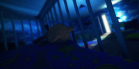 DLC رایگان بازی Among The Sleep منتشر شد