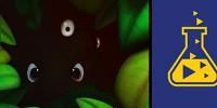 بازی جدید استودیوی Playtonic Games جانشینی برای عنوان Banjo-Kazooie + تصاویر