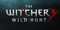 تصاویر جدیدی از بازی The Witcher 3: Wild Hunt منتشر شد