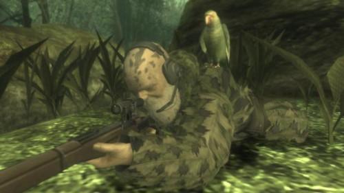 طوطی جان این درخت نیست!