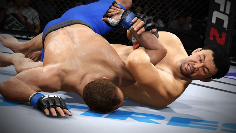 [تصویر:  UFC-1.jpg]