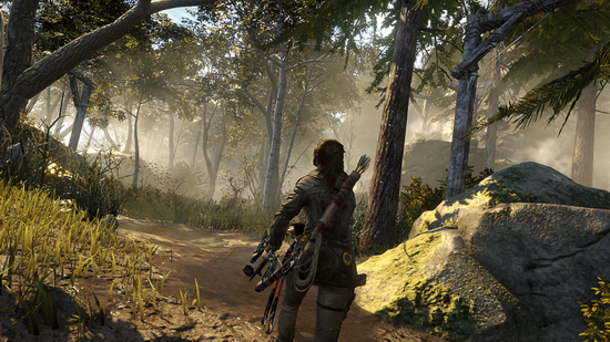 rottr-forest-png