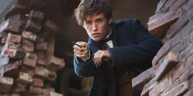 fantastic-beasts-where-find-them-eddie-redmayne-newt-1-660x330