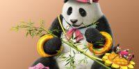 panda_1p_tk7cs_fix_1481294601