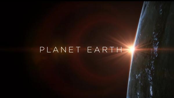 [سینماگیمفا]: موسیقی هفته: دانلود موسیقیمتن مستند Planet Earth II