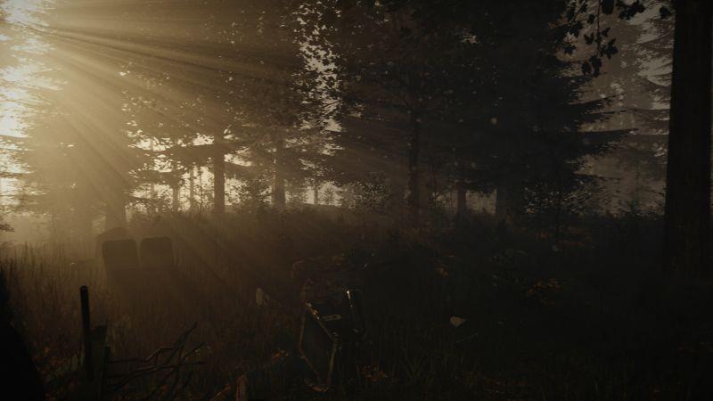 تاریخ عرضه عنوان وحشت بقاء The Forest برای رایانههای شخصی مشخص شد