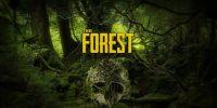 عنوان The Forest پس از چهار سال از حالت دسترسی زود هنگام خارج شد