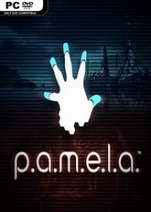 P.A.M.E.L.A