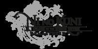 گزارش: نسخهی بازسازی شدهی Ni No Kuni: Wrath of the White Witch لو رفت