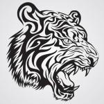 تصویر پروفایل tatson tiger