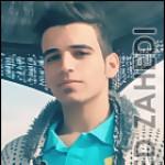 تصویر پروفایل حامد زاهدی