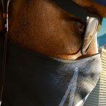 تصویر پروفایل Wrench