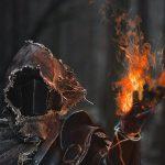 تصویر پروفایل darkwarrior1994